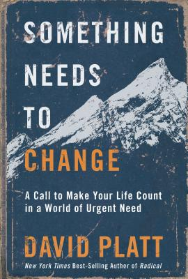 Something Needs to Change: A Call to Make Your Life Count in a World of Urgent Need - Platt, David