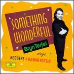 Something Wonderful: Bryn Terfel Sings Rodgers & Hammerstein
