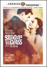 Splendor in the Grass - Elia Kazan