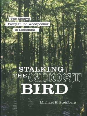 Stalking the Ghost Bird: The Elusive Ivory-Billed Woodpecker in Louisiana - Steinberg, Michael K