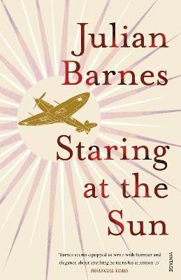 Staring at the Sun - Barnes, Julian