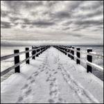 Summer Into Winter / North Marine Drive