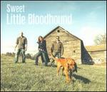 Sweet Little Bloodhound