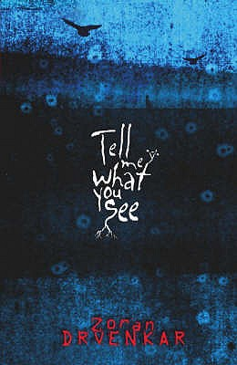 Tell Me What You See - Drvenkar, Zoran