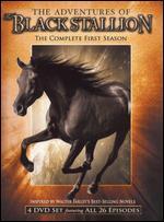 The Adventures of the Black Stallion: Season 01 -