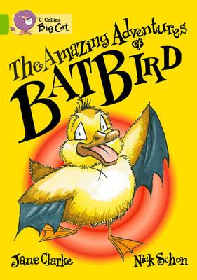 The Amazing Adventures of Batbird Workbook -