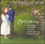 The Bird in the Bush