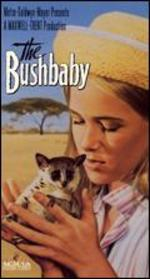 The Bushbaby
