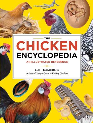 The Chicken Encyclopedia: An Illustrated Reference - Damerow, Gail