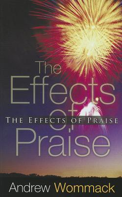 effects of praise The impact of process praise on maths mindset and effort author: dr juliet o' callaghan introduction carol dweck's 'theories of intelligence' proposes that.
