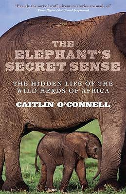 The Elephant's Secret Sense: The Hidden Life of the Wild Herds of Africa - O'Connell, Caitlin