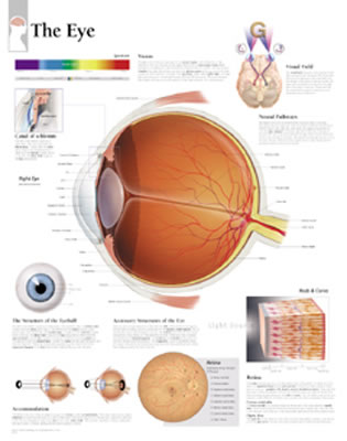 The Eye Chart - Scientific Publishing, and Various