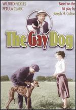 The Gay Dog