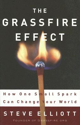 The Grassfire Effect: How One Small Spark Can Change Your World - Elliott, Steve