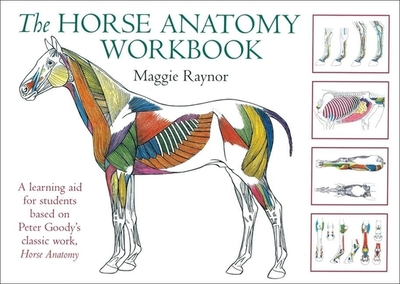 The Horse Anatomy Workbook: A Learning Aid for Students Based on ...