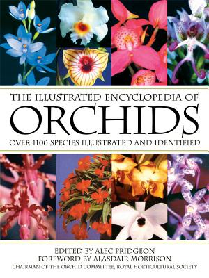 The Illustrated Encyclopedia of Orchids - Pridgeon, Alec