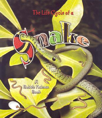 The Life Cycle of a Snake - Crossingham, John, and Kalman, Bobbie