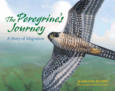 The Peregrine's Journey: A Story of Migration - Dunphy, Madeleine, and Kest, Kristin (Illustrator)