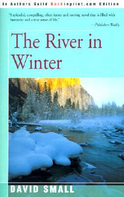 The River in Winter - Small, David
