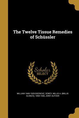 The Twelve Tissue Remedies of Schussler - Boericke, William 1849-1929, and Dewey, Willis a (Willis Alonzo) 1858-1 (Creator)