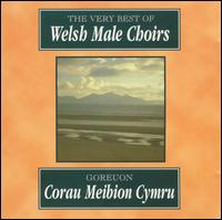 The Very Best of Welsh Male Choirs - Alan S. Rees (piano); Annette Bryn Parri (piano); Arthur Reese (vocals); Carys Hughes (organ); David S. McBride (piano);...