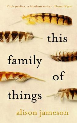 This Family of Things - Jameson, Alison