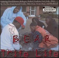 Trife Life - Bear