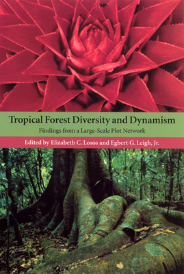 Tropical Forest Diversity and Dynamism: Findings from a Large-Scale Plot Network - Losos, Elizabeth (Editor)