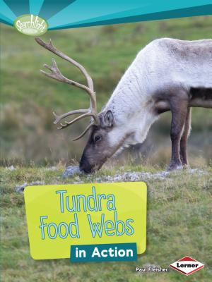 Tundra Food Webs in Action - Fleisher, Paul