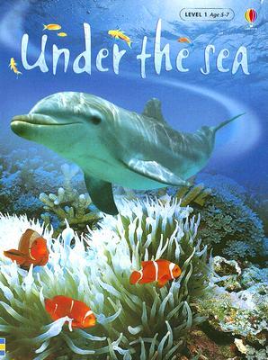 Under the Sea - Patchett, Fiona, and Wray, Zoe (Designer)
