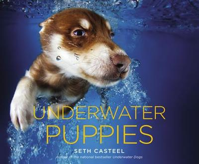Underwater Puppies - Casteel, Seth
