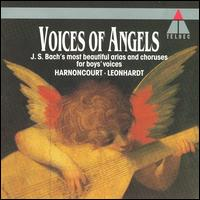 Voices of Angels: Bach's Most Beautiful Arias and Choruses for Boys' Voices - Peter Jelosits (vocals); Peter Jelosits (soprano); Roger Cerecius (soprano); Roger Cerecius (vocals);...
