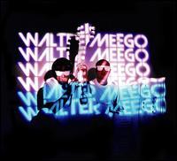 Voyager - Walter Meego