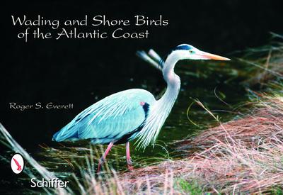 Wading & Shore Birds of the Atlantic Coast - Everett, Roger S