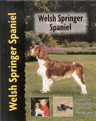 Welsh Springer Spaniel - Wessem, Haja Van