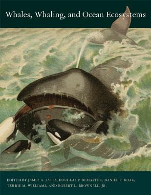 Whales, Whaling, and Ocean Ecosystems - Estes, James A, Dr. (Editor), and Demaster, Douglas P (Editor), and Doak, Daniel F (Editor)