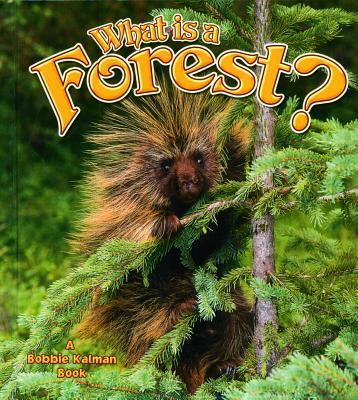 What Is a Forest? - Kalman, Bobbie Smithyman