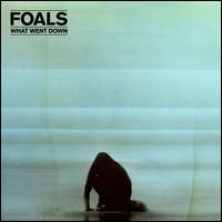 What Went Down [Deluxe Edition] - Foals