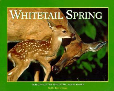 Whitetail Spring - Ozoga, John J