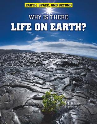 Why Is There Life on Earth? - Solway, Andrew