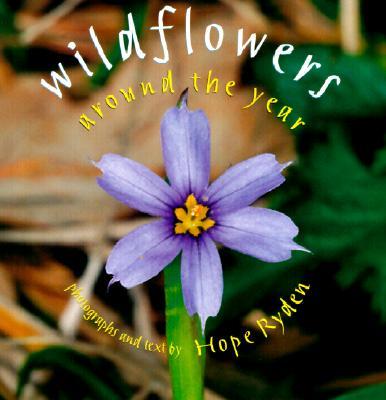 Wildflowers Around the Year - Ryden, Hope